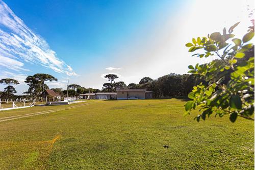 Imagem 1 de 15 de Chacara - Campo Largo Da Roseira - Ref: 9055 - V-9055