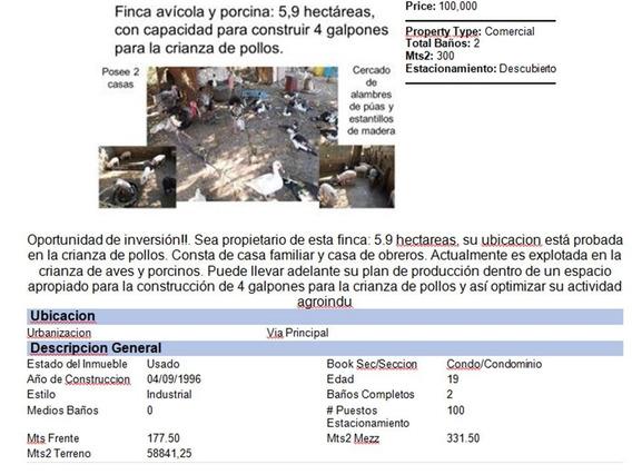 Vm Finca Avícola Y Porcina En La Cañada