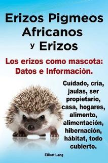 Erizos Pigmeos Africanos Y Erizos. Los Erizos Como Mascota: