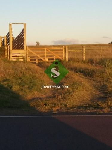Ruta 39, A 7 Kilometros De San Carlos. - Ref: 167088