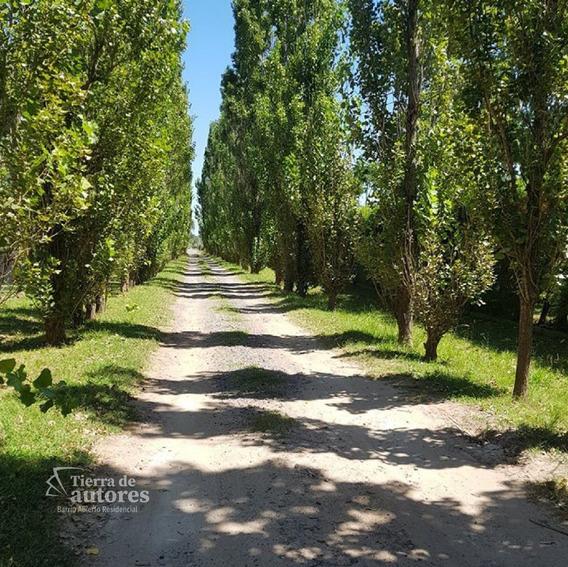 Terreno En Pueblo Esther - Tierra De Autores - Financiación