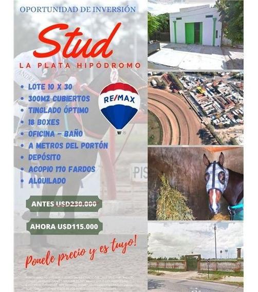 Galpon - Stud - 10x30 - 18 Boxes-depósito En Venta