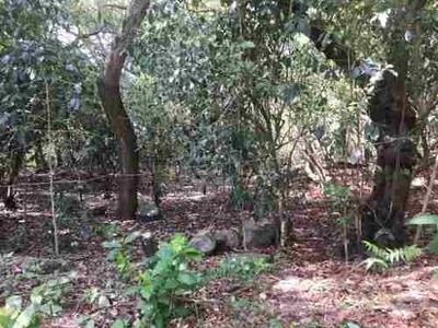 Terreno En Las Orillas De La Zona Urbana De Suchitlan
