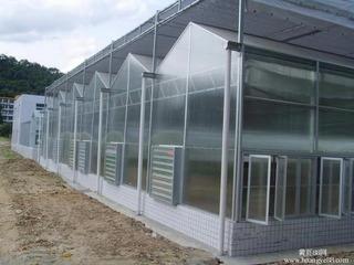 Rollo Plastico De Invernadero Claro Difuso 6.20 M X 100mts