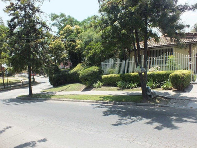 Rojas Magallanes / Araucania