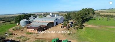 Fazenda Com 1497 Hectares Para Lavoura Em Cachoeira Do Sul
