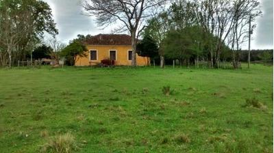 Fazenda Rural À Venda, Centro, Caçapava Do Sul. - Fa0005