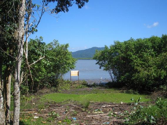 Terreno À Venda Ilha Comprida-sp, 4.000 M², Pedrinhas, Canal