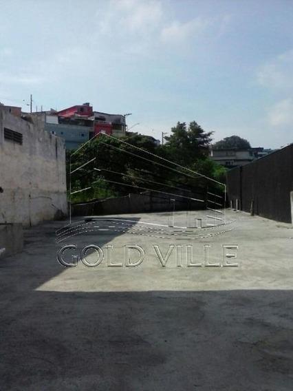Te0256 Terreno Para Locação Em Osasco - Te0256 - 33874999