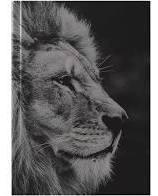 Bíblia Sagrada | Acf | Leão Hebraico I Capa Dura | Preta