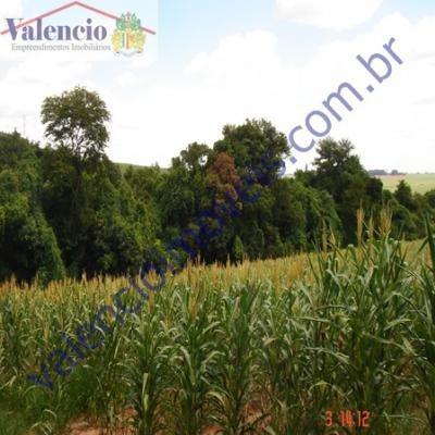 Venda - - Pinhal - Limeira - Sp - 1664egc