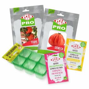Kit De Sementes Tomates Super Sabor Sêneca E Tigre