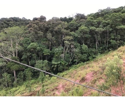 Imagem 1 de 21 de Rural Para Venda, 0 Dormitórios, Dos Pereiras (caucaia Do Alto) - Cotia - 2886