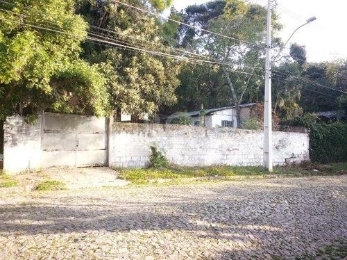 Terreno Em Vila Conceição - Mi269249
