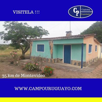 Chacra A 30 Km De Montevideo