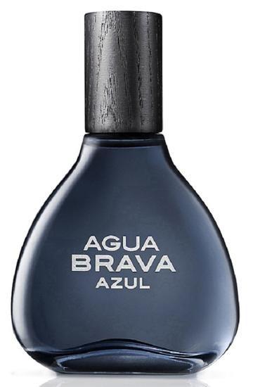 Perfume Antonio Puig Azul Eau De Toilette M 100ml