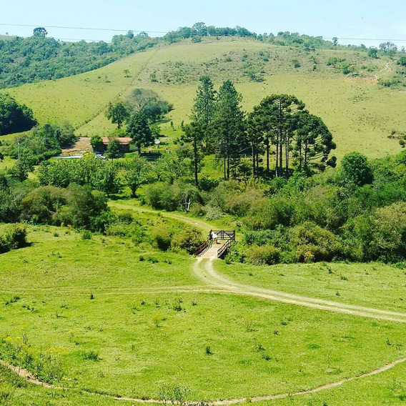 Sitio Sul De Minas Gerais Munhoz-mg