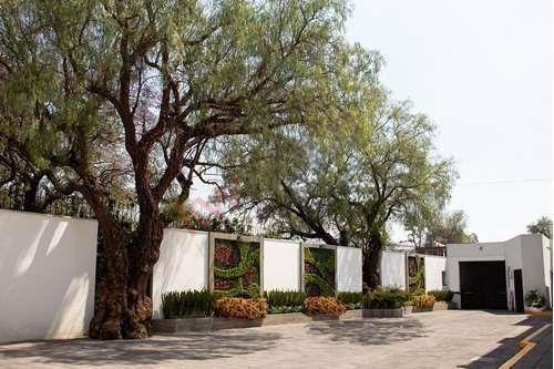 Venta Casa En Residencial Cuauhtémoc 249 Casa 1 $5,800,000.00