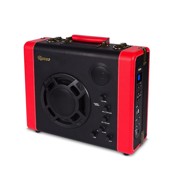 Caixa Amplificadora Raveo Pulse Bluetooth Usb Microfone Nfe
