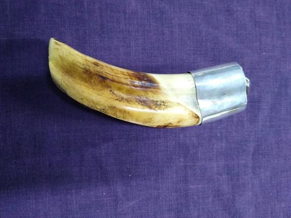 Colmillo De Jabalí Africano Casquillo En Plata Ley 0.925