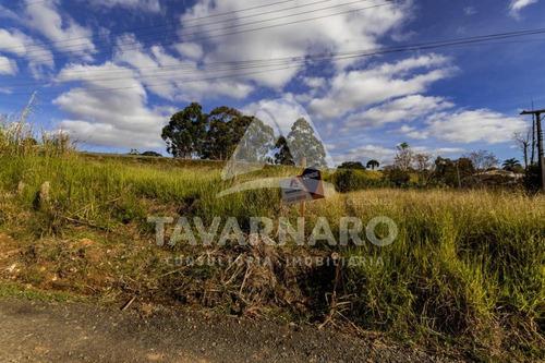 Imagem 1 de 10 de Terrenos - Ref: V5767
