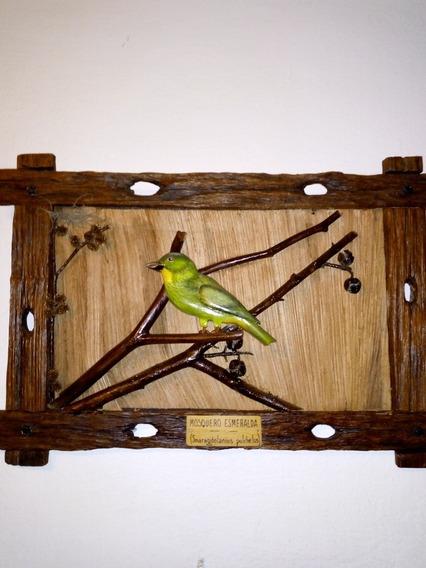 Cuadros Rústicos Con Pájaros Tallados En Madera