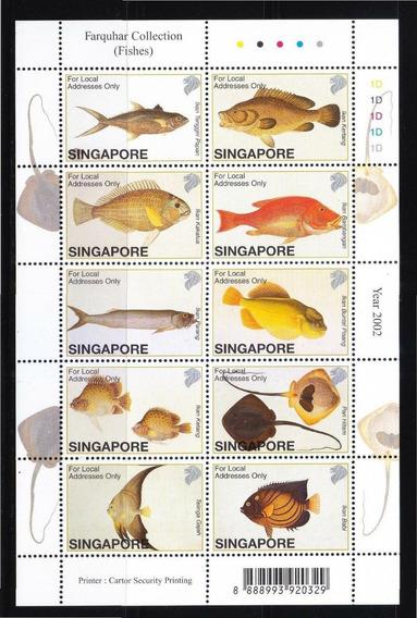 Dams Singapore Cingapura Singapura Peixes Fauna Vida Marinha