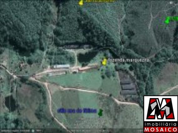 Área Rural - Atibaia - Próximo À Rodovia - - 89599 - 4491537