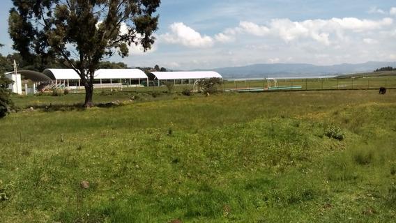 Invierte¡¡¡ Terreno Muy Cerca De Toluca (agricola)
