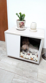 Cucha Funcional-mueble Para Mascota/perro/gato