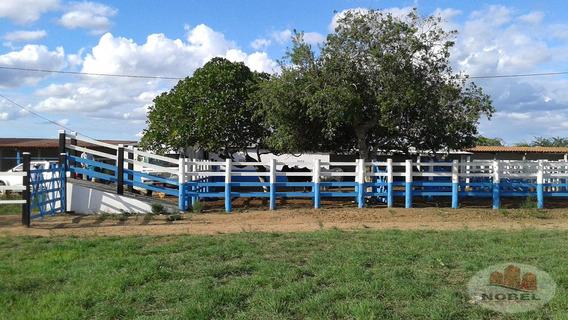 Chácara/sítio Com 7 Dormitório(s) Localizado(a) No Bairro Zona Rural Em Santa Bárbara / Santa Bárbara - 2502