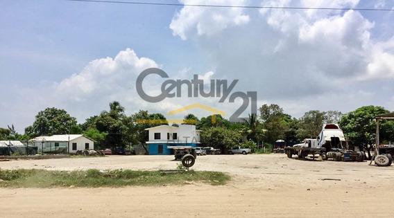 Terreno Industrial Pavimentado En Renta, Ejido Flores Magon, Altamira, Tamaulipas.