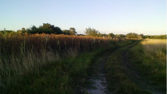 Excelente 4 Lotes De Terrenos Frente A La Reserva Morando