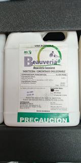Beauveria, Beauveria Bassiana, Insecticida.