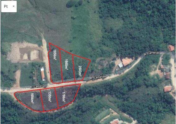 Terreno, Parque Do Sol, Amparo - R$ 153.000,00, 0m² - Codigo: 1711 - V1711