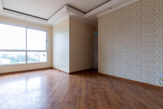 Apartamento Para Aluguel - Itaquera, 3 Quartos, 67 - 893038485