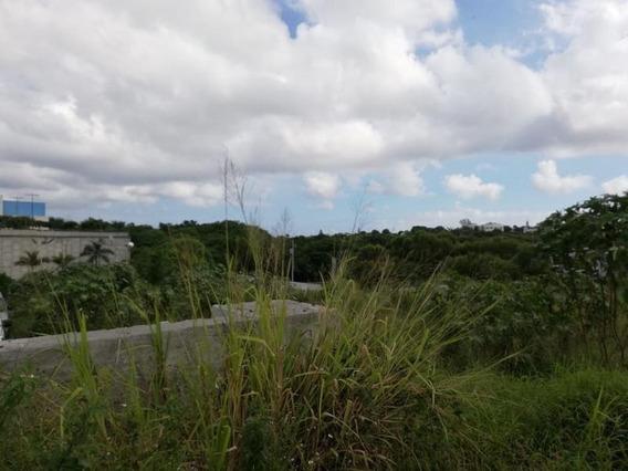 Venta De Terreno Sobre Av. Miguel Hidalgo, Tampico