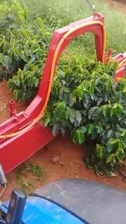 Pulverizador E Aplicador De Herbicida Em Café Novo
