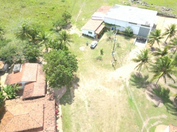 Fazenda Com 2 Dormitórios À Venda, 600000 M² Por R$ 1.500.000,00 - Dom Marcolino - Maxaranguape/rn - Fa0014