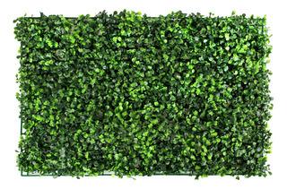 Combo 40 Pzas De Follaje Artificial Boxwood Muro 60 X 40cm