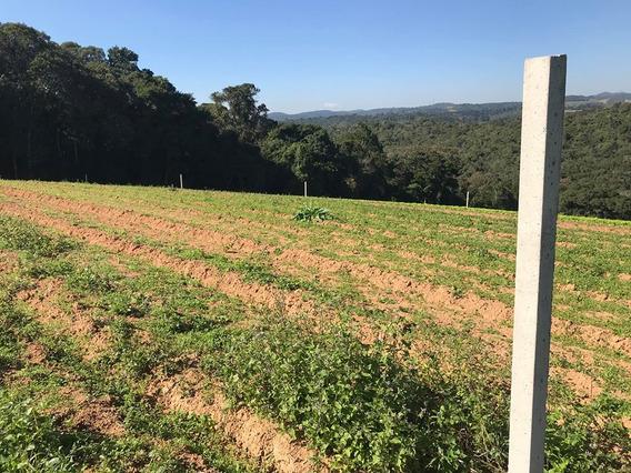 Terrenos 600 M2 Para Construir Sua Casa De Campo 22 Mil J