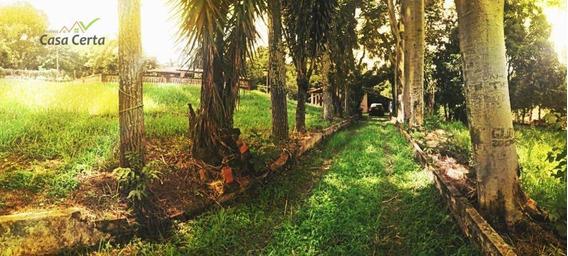 Chácara Com 3 Dormitórios À Venda, 5300 M² Por R$ 650.000 - Chácaras Horizonte Azul - Mogi Guaçu/sp - Ch0094