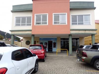 Sala Comercial Na Lagoa Da Conceição - 74341