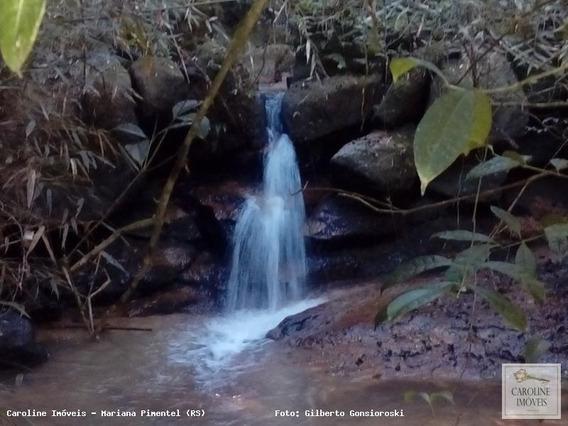 Área Rural Para Venda Em Mariana Pimentel, Estrada Mina Do Papaléo - 1160_1-797165