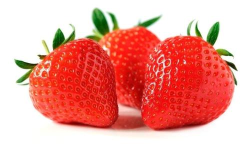 Imagen 1 de 6 de Semillas Organicas De Frutillas Sobre De 25 Semillas