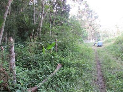 Juquitiba - Terreno/5.100 Mts/bosque/mata Referência: 04365