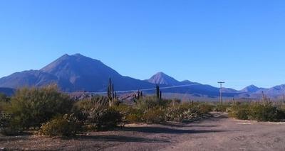 Se Venden Terrenos En El Vizcaíno, Baja California
