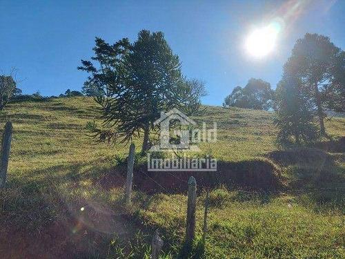 Imagem 1 de 8 de Chácara À Venda, Com 23000 M² Por R$ 750.000 - Zona Rural - São José Dos Campos/sp - Ch0096