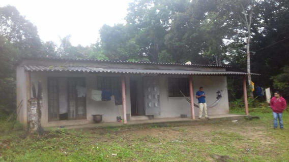 Sítio, Icapara, Iguape - R$ 90.001,00, 0m² - Codigo: 52 - V52