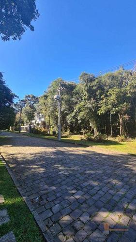 Terreno À Venda, 890 M² Por R$ 515.000 - Ana Rech - Caxias Do Sul/rs - Te0249